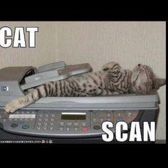 Radiology Humor!