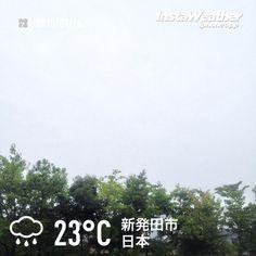 おはようございます! 雨が少しずつ強くなってます~(汗