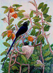 Janet Summers-Tembeli - Seychelles Paradise...