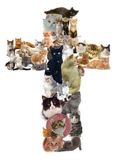 Aunt Rachel: (and Missa) a cross made of Kittens!