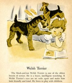 Welsh Terrier and Siberian Husky Dog Illustrations by by RoxyRani, $5.00