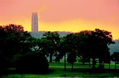 A historic gem, Bok Tower Gardens has been inspiring Central Florida Visitors for more than 80 years.
