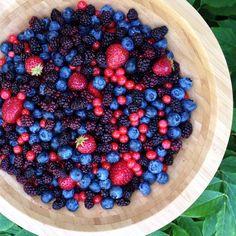blueberries, wild blackberries, wild huckleberries, & homegrown strawberries...yumm!