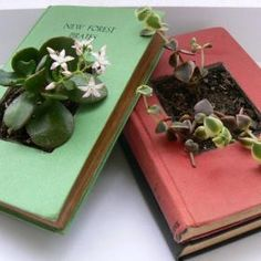 Recycled Book Planters (Read about how the author felt about cutting up the old books, if you are a book lover, you will totally empathize. Teen Programs, Library Programs, Old Books, Vintage Books, Diy Recycled Books, Teen Library, Library Ideas, Library Work, Recycling