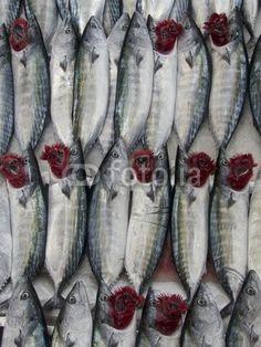Frisch gefangener Fisch mit roten Kiemen auf dem Wochenmarkt in Istanbul Erenköy im Stadtteil Kadiköy am Bosporus in der Türkei