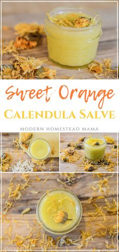 DIY Sweet Orange Calendula Salve Recipe - All Purpose Homemade Herbal Salve