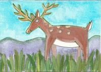 Deer  ATC  marker and gouache  by Heidi WinelandATCsforALL - Gallery - Search Results
