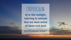 Join us in learning a new nature word each month. Word of the month for August: CREPUSCULAR | Green Acorns