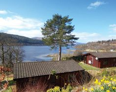 Whether it be for a cosy escape away from it all or a celebratory family get together, our log cabins come in all shapes, sizes and styles to suit everyone. Scottish Holidays, Scandinavian Cabin, Unique Cottages, Scotland Tours, Fort William, Highlands, West Coast, Places To Go, House Styles