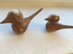 Birds from West Jutland (Wood unknown)