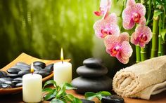 Green Spring SPA is massage therapy place and day spa in Charlotte. We are specialized in various massage therapy and treatments. Call now: for details.