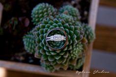 Jenni and Tyler | Twin Oaks Wedding| Aptera Studios-2 #romance #lovelove #wedding #bride #groom #truelove