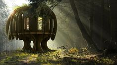 Magical Tree House - I really want to live there!!! <3