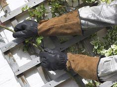 Gardening Gloves | www.coolgarden.me