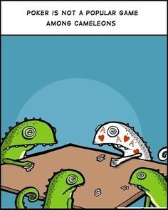 Chameleons playing cards!
