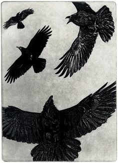 THE DANCE - Raven (crow, bird) Series-   5 x 7 inches Aquatint Etching,  2010 -Only FOUR left in the edition.. $35.00, via Etsy.