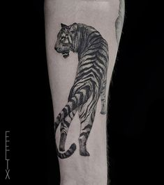 nice tiger tattoo by @felixgraphtattoo