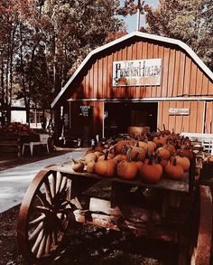 October Country, Thanksgiving Wallpaper, Autumn Aesthetic, Autumn Scenery, Autumn Cozy, Happy Fall Y'all, Hello Autumn, Fall Harvest, Autumn Inspiration