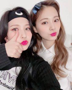 Nayeon, Kpop Girl Groups, Korean Girl Groups, Kpop Girls, Twice Tzuyu, Twice Group, Sana Momo, Jihyo Twice, Twice Once
