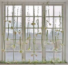 I love this whimsical window treatment