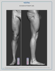 Anatomy For Sculptors e-book - LOWER LIMB chapter - anatomy reference book for… Leg Anatomy, Gross Anatomy, Anatomy Poses, Anatomy Study, Anatomy Drawing, Anatomy Art, Body Reference, Anatomy Reference, Figure Reference