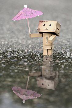 A rainy day reflection