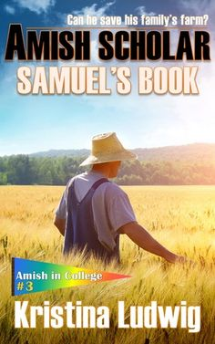 Hayley's Reviews: Amish Scholar - Review