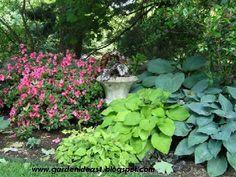 gardening ideas | Garden Ideas