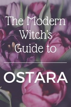 The Modern Witch's Guide to Ostara - a mini online course packed with ideas to help you understand and celebrate the spring equinox #Wicca #Witchcraft #Ritual #Sabbat #Witch #Pagan #Rituals #Sabbats #Correspondences