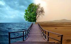 Sea And Desert HD Wallpaper