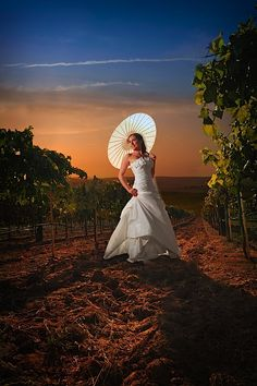 Delaney Vineyards and Winery in Grapevine.
