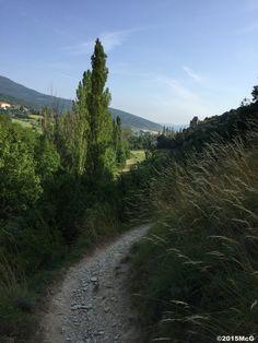 Road to Pamplona #Camino2015 july McG