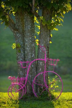 Pink wrought iron bicycle, central Tennessee © Jim Zuckerman
