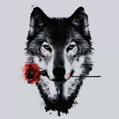 Wolf with a rose, forbidden love