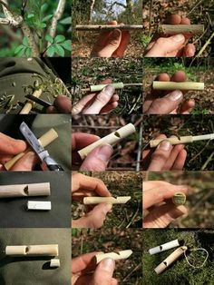Just remember your pen knife - The tree to look for is Elder Tree…