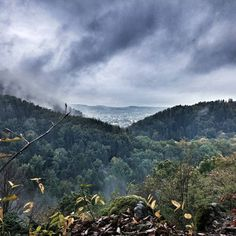 Das herbstliche Steinachtal in unserem Forstbetrieb Nordhalben. ☁    ☁ #nordhalben #frankenwald #wald #staatswald #baum #bäume #tal #steinachtal #wolken #herbst #nofilter #nofilterneeded