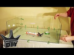 How to Make an Aquarium. Building your own tank is a worthwhile, cost saving, and interesting activity. It requires only some essential tools and a good sheet of glass or plastic; the other things are up to you and your imagination. Aquarium Diy, Wall Aquarium, Aquarium Stand, Glass Aquarium, Aquarium Design, Aquarium Fish Tank, Turtle Aquarium, Saltwater Tank, Saltwater Aquarium