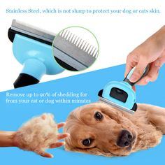 >>>OrderPets Dog Cat Brush Pet Comb for Shedding Furminators Dog Brush Grooming Tool Hair Remover Hair Clipper Tools Cleaning Trimmer 20Pets Dog Cat Brush Pet Comb for Shedding Furminators Dog Brush Grooming Tool Hair Remover Hair Clipper Tools Cleaning Trimmer 20Best...Cleck Hot Deals >>> http://id674108593.cloudns.hopto.me/32727067755.html.html images
