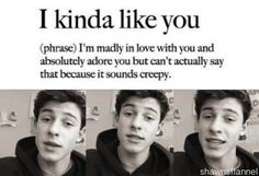 Shawn Mendes. I love him so much I have cried about it. #MoreThanAFangirl