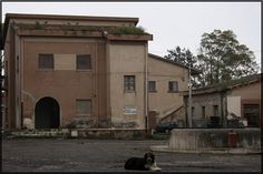 Borgo Lupo - Paesi Fantasma
