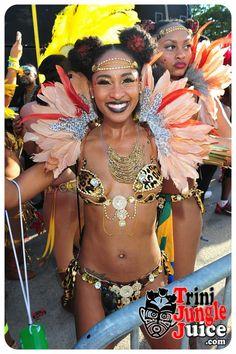 images/miami_carnival_parade_2014_pt3-067.jpg