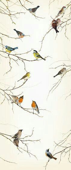 Bird Wallpaper Unique B&q Wallpaper Birdsi Love This One Neeeeeeeeeeeeed It  Birds Design Inspiration