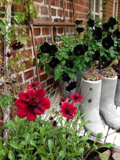 Fru Pedersens have: Beton gummistøvler med husløg.