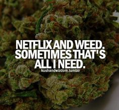 Well cannabis tutorials has every how to guide for cannabis you could ever ask for. Stoner Quotes, Stoner Art, Weed Humor, 420 Quotes, Frases, Herbs, Health, Humor, Weed