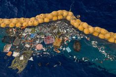 The Ocean Cleanup the Dutch non-profit organization, successfully catches plastic in Great Pacific Garbage Patch. The Ocean Cleanup…