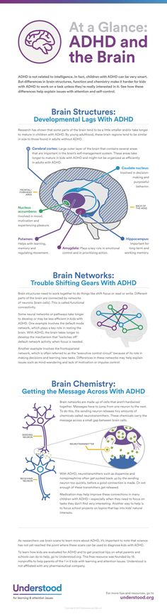 Researchers are learning more and more about how differences in brain development and brain function are involved in ADHD (also known as ADD). This graphic can help you understand how your childs brain works—and why ADHD isnt simply a matter of willpower. Adhd Odd, Adhd And Autism, Formation Communication, Adhd Brain, Adhd Help, Adhd Diet, Adhd Strategies, Attention Deficit Disorder, Adult Adhd