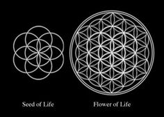Sacred Geometry's Seed of Life and pictured inside the flower of Life | #SacredGeometry #HeiligeGeometrie |