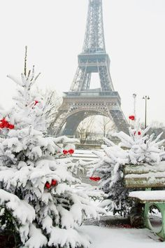 Paris in winter - beautiful
