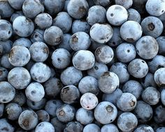 I like to freeze blueberries for pies and muffins, but they are wonderful all by themselves.