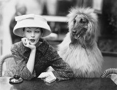 Dovima with Sacha, cloche and suit by Balenciaga, Café des Deux Magots, Paris, 1955 Richard Avedon